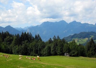 bilder_region_oberbayern_chiemsee_tirol (6)